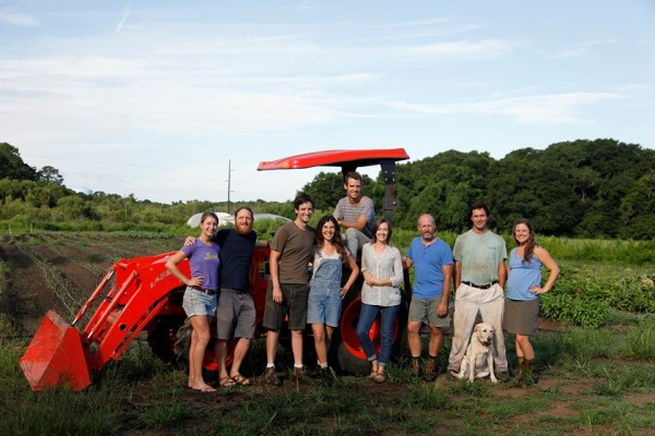 Dirt Works Incubator Farm on Johns Island, SC allows beginning farmers to collaborate and share tools, resources, equipment and more.